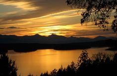 Bodega Ridge by scout.magazine, via Flickr