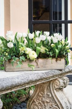 Palm Beach floral designer Tom Mathieu creates arrangements that are as chic as the resort town itself. Enjoy his causal look with a tropical twist. Spring Flower Arrangements, Spring Flowers, Floral Arrangements, Moon Garden, Dream Garden, Garden Pots, Window Planters, Window Boxes, White Tulips