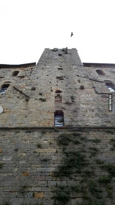My assassin's experience tells me that I can synchronise my map up there