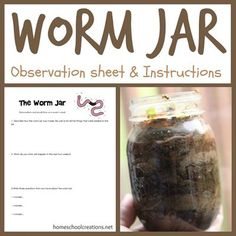 How to make a worm jar at home and a simple (and free) science observation sheet from Homeschool Creations.