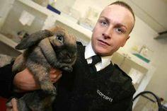 Rabbit Awareness Week to help abandoned Scottish bunnies