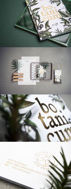 Kitz Branding by Hochburg Design