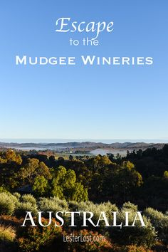 Mudgee is one of the best but less known wine regions of Australia. I have crafted a list of reasons to escape to the Mudgee wineries. #lesterlost #mudgee #winery #australia #travelblog
