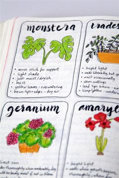 journal ideas for work emuse: Bullet journal ideas: Plant care emuse: Bullet Journal Ideen: Pflanzenpflege Garden Journal, Nature Journal, Bullet Journal Ideas Pages, Bullet Journal Inspiration, Garden Planner, House Plant Care, Book Of Shadows, Planner Organization, Bujo
