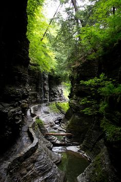Canyon Path, Seneca Falls, New York photo via valican
