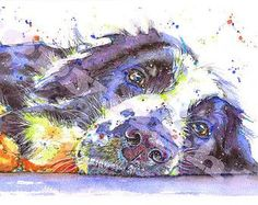 Fabulous Print of Original Watercolour Border Collie Sheep Dog Puppy Painting Art by Josie P