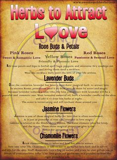 Herbs that attract Love BOS Page Grimoire Pages Instant Witchcraft Spells For Beginners, Magic Spells, Witchcraft Herbs, Charmed Spells, Wiccan Magic, Healing Spells, Love Spell That Work, Love Spell Chant, Spells That Really Work