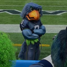 "Seattle Seahawks Mascot ""Blitz"""