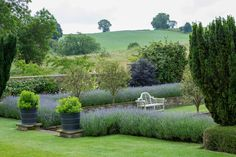 graham lloyd-brunt garden design