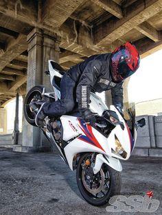 Honda stuntin - Motocycle Pictures and Wallpapers Motocross Shirts, Honda Cbr 1000rr, Custom Sport Bikes, Stunt Bike, Biker Boys, New Honda, Hot Bikes, Honda Motorcycles, Dirtbikes