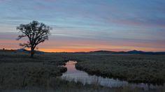 500px / Rancho Perdido 3.0 by Jeff Morley
