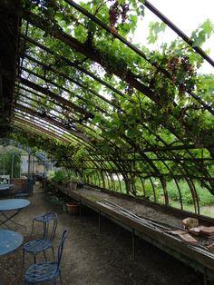Serre du jardin potager du Château de la Bussière