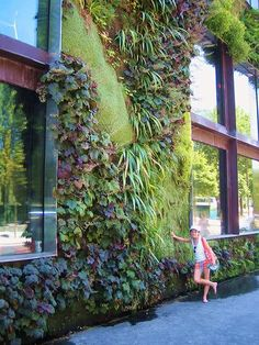 Quai Branley Museum, Paris, France - vertical gardens