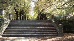 Jardim Botânico da Universidade de Coimbra - Museu con[vida]