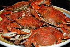 Favorite Festival Steamed Crabs Recipe on Yummly. @yummly #recipe