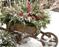 This vintage wheelbarrow holds branches of noble fir, Port Orford cedar, dried eucalyptus and winterberry holly.