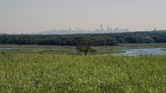 The manmade hills of Staten Island's Freshkills Park are inarguably beautiful…