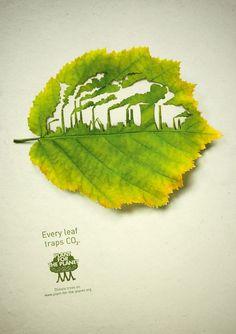Plantons pour la planète: l'usine
