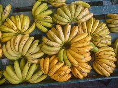 Bananas of the Azores