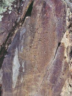 Gravuras rupestres, Vila Nova de Foz Coa, Portugal