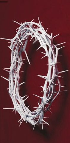 Entertainmentguidelocal Crown Thorns Craft