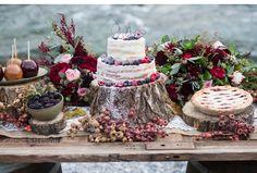 Rustic Merlot and Blush Rocky Mountain Wedding Inspiration 10