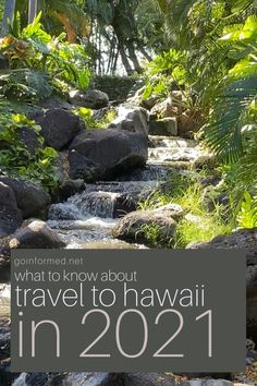 Make the most of your post-vax Hawaii paradise vacation with these simple tips from GoInformed.net. Find out what's changed, what's the same, and how to be prepared for a visit to Hawaii during the 2021 COVID era. Travel Tips, Travel Destinations, Big Island Hawaii, Hawaii Travel, Kauai, Things To Know, Adventure Travel, Paradise, Vacation