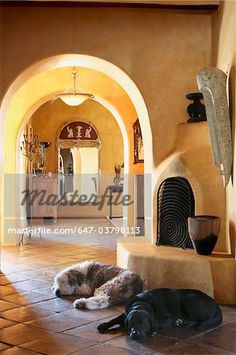 Pet dogs laying on tile floor in front of kiva fireplace  – Image © Masterfile.com: Creative Stock Photos, Vectors and Illustrations for Web, Mobile and Print