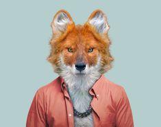 Retoque fotografico-humanización de los animales.
