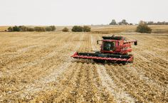 The Post-GMO Economy - Modern Farmer Some farmers returning to non-GMO seeds because the GMO traits are no longer working.