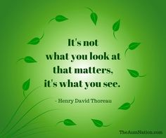 """""""It's not what you look at that matters, it's what you see."""" - Henry David Thoreau"""