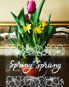 Hamilton Ontario, Happy Spring, Sunny Days, Signage, Create, Places, Instagram, Art, Art Background