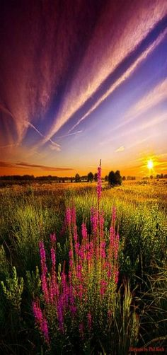 Horizons by Phil Koch, Milwaukee, Wisconsin, USA. See more at http://glamshelf.com