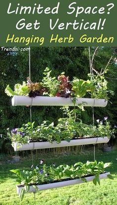 - Gardening via www.trendsi.com