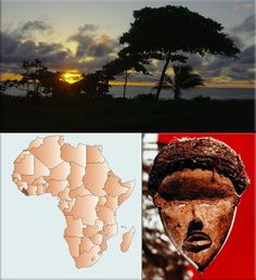 African medicine into american colonization to present times help essay