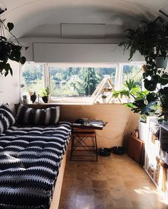 One of the things we love about living in our airstream is the sunlight that floods our living room every morning, pretty sure the plants enjoy this too.