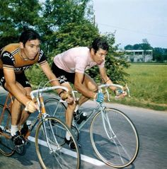 CYCLING ART BLOG: Eddy Merckx