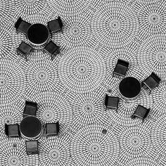littlebowerbird △ Photography Natural Pattern Texture