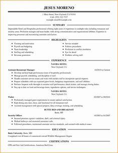 Nurse Pracioner Resume Examples   No Experience 3 Resume Format Sample Resume Resume Resume Examples