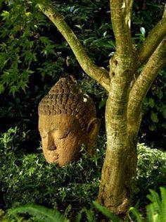 Buddha gardens rock.