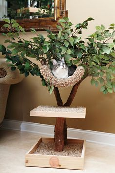 Seedling Cat Tree by PetTreeHouses on Etsy, $249.00