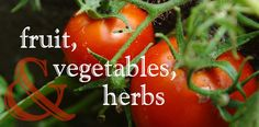 University of Idaho, Landscapes and Gardens website. Link to Fruits, Vegetables, and Herbs.