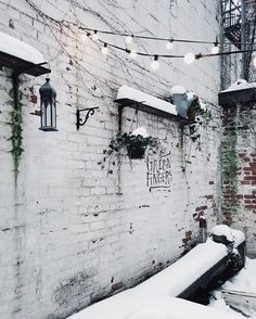 Snowy urban hideaways. I hope there is something that makes you smile today. 🍃 || #nyc