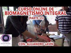 Anatomía y puntos de Biomagnetismo  MUY DIDACTICO- Alejandro Lavín - YouTube