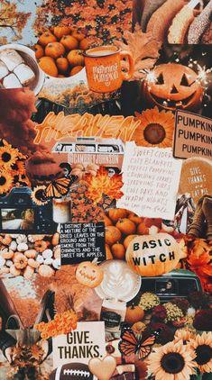 Orange aesthetic for autumn – halloween – Fall Cute Fall Wallpaper, Halloween Wallpaper Iphone, Halloween Backgrounds, Holiday Wallpaper, Fall Wallpaper Tumblr, Orange Wallpaper, Trendy Wallpaper, Pumpkin Wallpaper, Thanksgiving Wallpaper