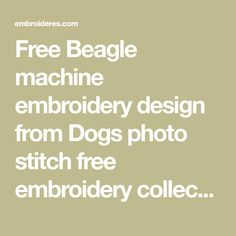 Free Beagle machine embroidery design from Dogs photo stitch free embroidery collection. Realistic art for your shirt. Several formats available for instant download.
