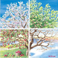 Beautiful Four Seasons Tree.but instead of apples, I want peaches. Four Seasons Painting, Four Seasons Art, Pictures To Paint, Tree Art, Painting Inspiration, Art Lessons, Art Projects, Art Photography, Canvas Art