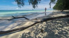 Eat Sleep Dive  Palau.