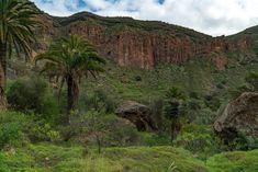 Die Top 30 Fotospots auf Gran Canaria Strand, Natur und Sehenswürdigkeiten Gran-Canaria Die besten Spots Gran Canaria - Caldera de Bandama