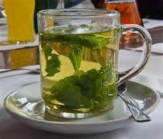 Chá de espinheira santa com óleo de copaíba e resina de jatoba. Receita natural para gastrite. Confira!